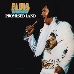 FRM-0873 Promised Land Gatefold/Translucent Gold Vinyl (Ltd Ed)