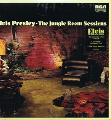 The Jungle Room Sessions - FTD  2 LP Ltd Edition 180gram Vinyl Set (Deleted/Last Copies)